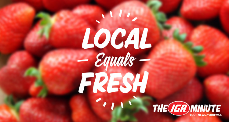 minute-header-Local-Equals-fresh-3
