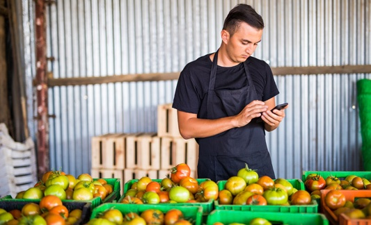 Man holding a phone and standing by variety of apples